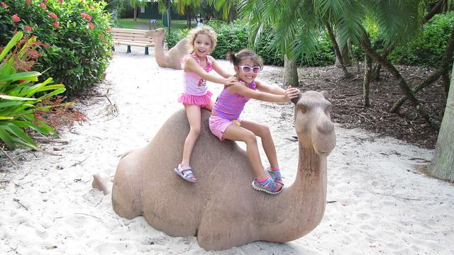 Zoo Miami 2015