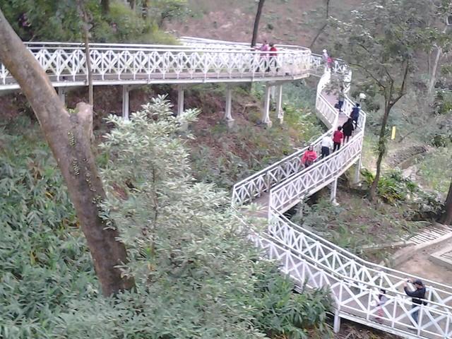 25228竹崎公園