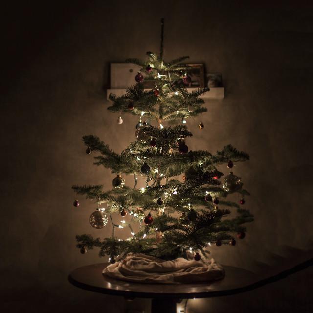 xmas_tree_2016, Canon EOS 50D, Canon EF 35mm f/1.4L