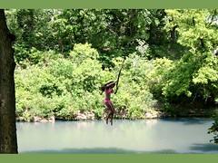 Pond Swing