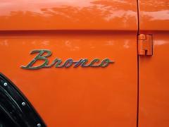 orange Bronco