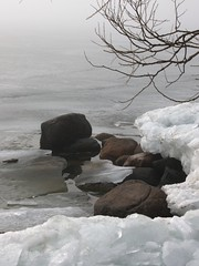 On the Rocks?