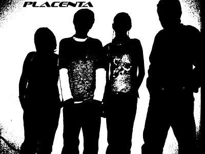 Placenta 1.0