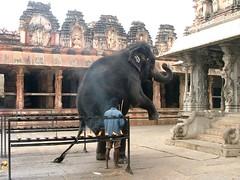 Indie - Hampi WHS
