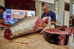 fish, meat, horse meat, food, butcher,