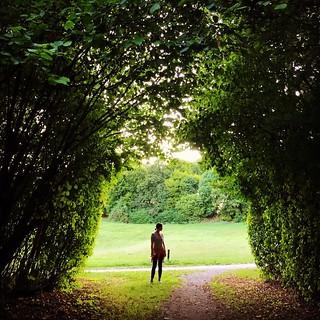 Green Zone. #Munich #green #iphone #park