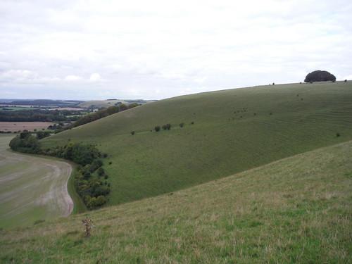 Win Green Hill