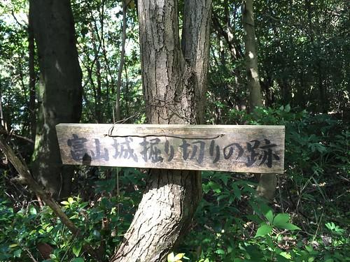 富山城址 #10