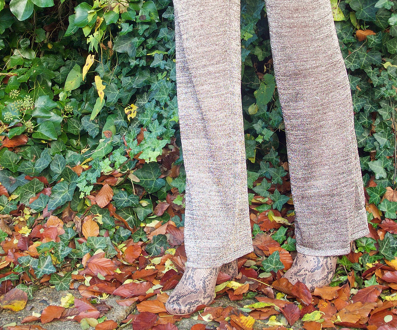Glitter Flare Trousers - H&M, Snake Print Ankle Boots - River Island
