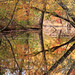 Some Autumn Reflections by Bill McBride Photography