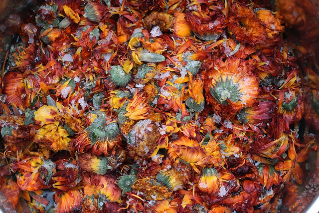 Natural Dyeing with Marigolds