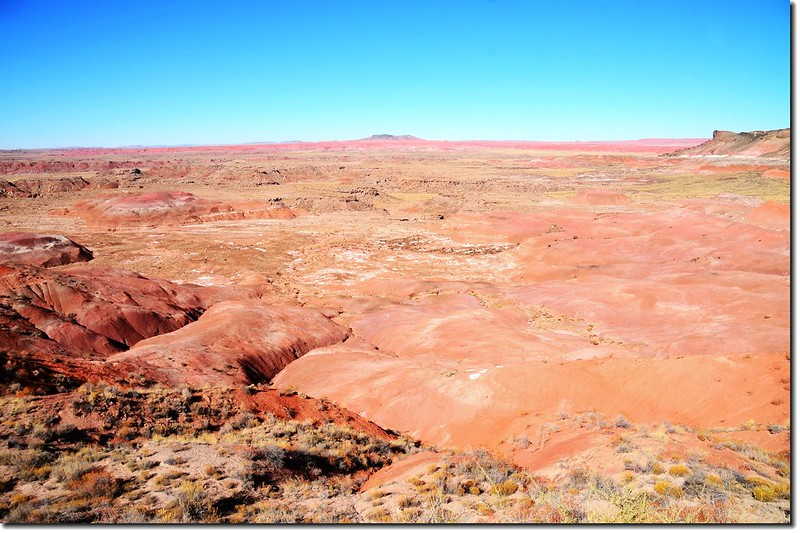 Painted Desert From  Whipple Point