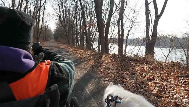 WDOT D&L Trail 1.16.15