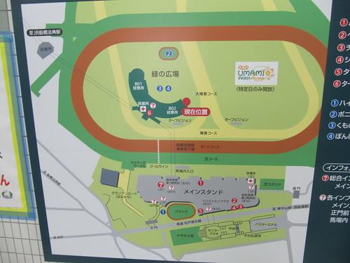 中山競馬場の緑の広場の位置関係
