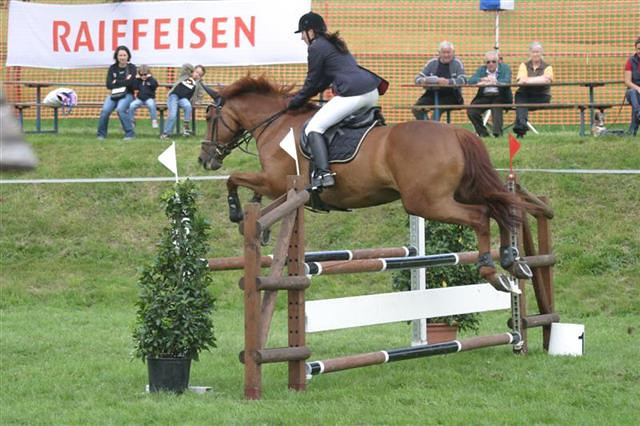 2007 Springkonkurrenz