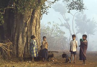 Children in the morning fog