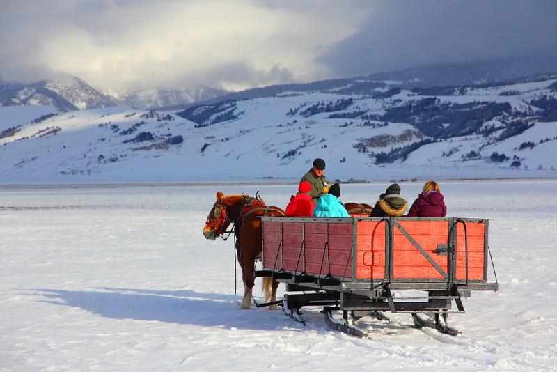 IMG_3928 Sleigh Ride, National Elk Refuge