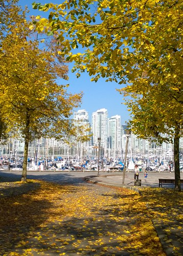 Vancouver framed in gold