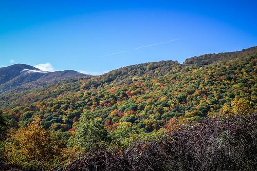 Blue Ridge Parkway in Autumn-7