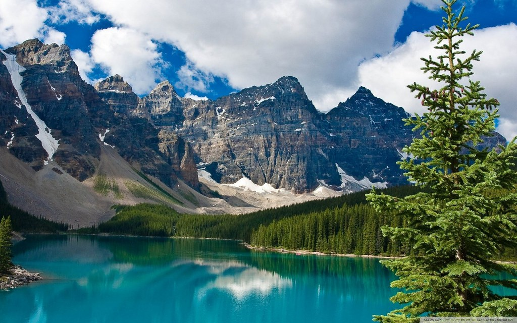 emerald_lake_yoho_national_park_british_columbia_canada
