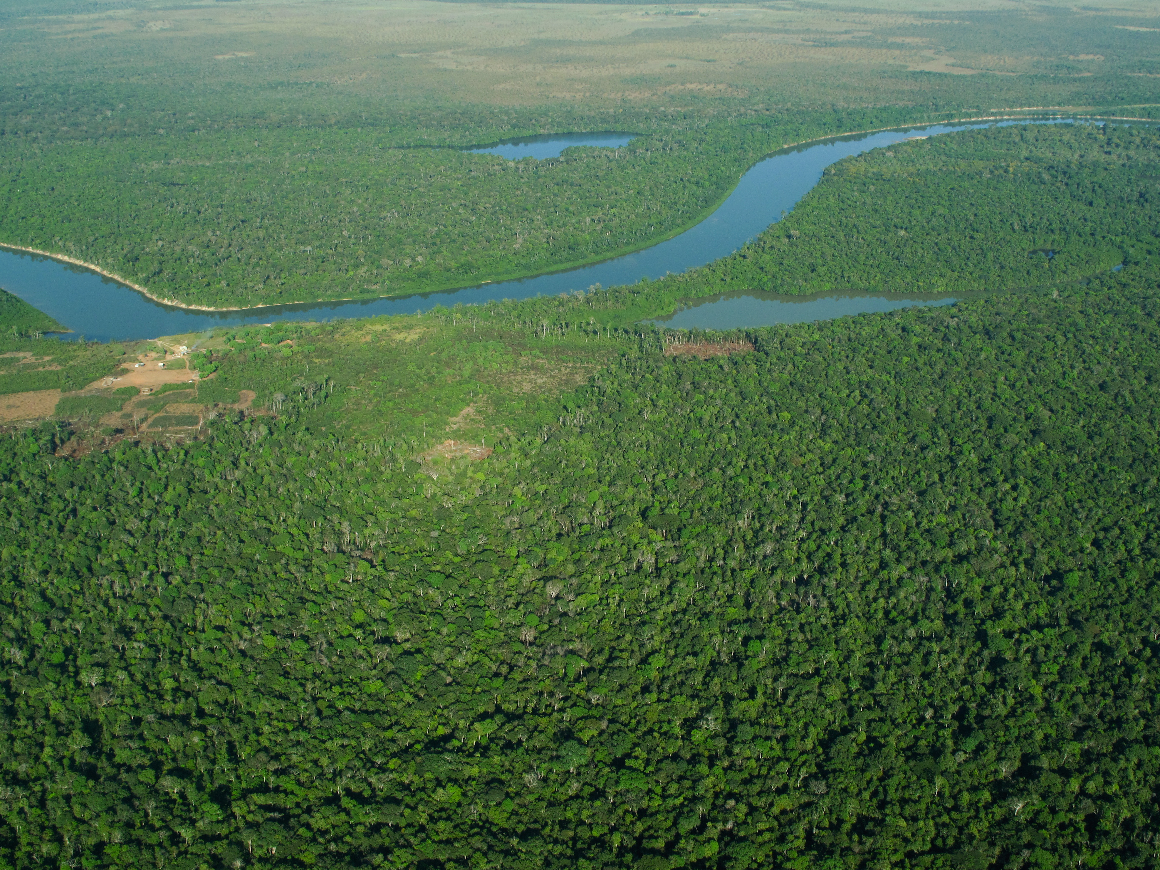 Aerial view of the Amazon Jungle | GRID-Arendal