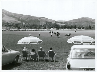 Auckland Polo Club. Polo at Clevedon.