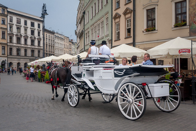 Horse and carriage in Kraków