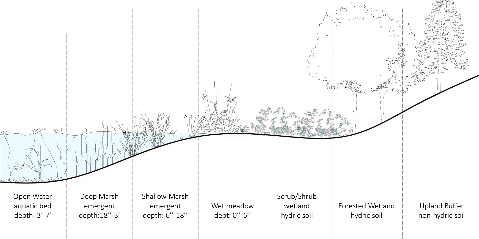 Picture of the Natural Ecology of the Site based on elevation