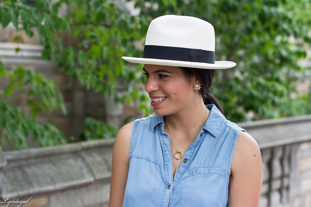 chambray dress, panama hat, leather tote-7.jpg