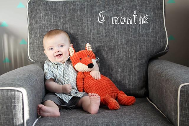 Finn at 6 months
