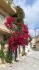 Kreta 2015 284