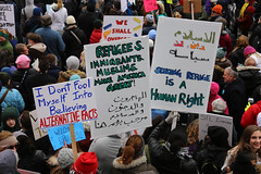 St. Louis Immigration Rally 2/4/2017