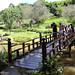 Lago do Templo Zu Lai em Cotia - SP