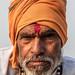 LR Madhya Pradesh 2018-2240350