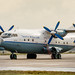 Aerovis Airlines An-12A