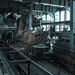 Zeche Zollverein (Edden D) by NL - very busy imaging and work - sorry for that.