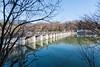 Photo:大井ダムを上流から By Isida Zyun'iti