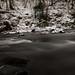 River Braan, The Hermitage