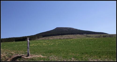 Autour du Mézenc en avril-mai - Page 2 27754809358_0ddee162a0