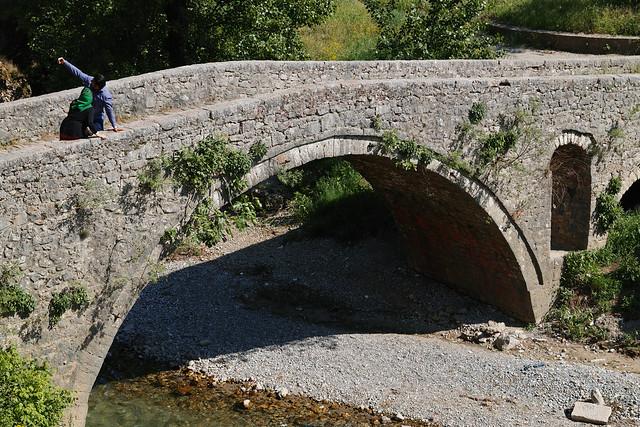 Old Ribnica