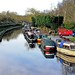 Staffordshire & Worcestershire Canal, March 2008
