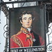 The Duke Of Wellington pub sign Southampton Hampshire UK