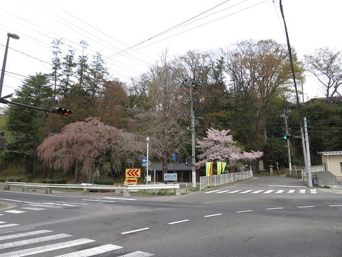 福島競馬場近くの信夫山公園