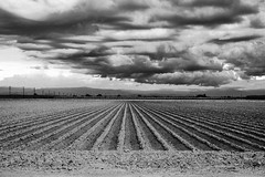Central Valley storm clouds