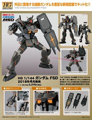 MSD - Gundam FSD [Full Scale Development]