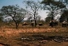 Huts in Malawi, 1975