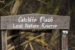 Catcliffe Flash 11/03/2018