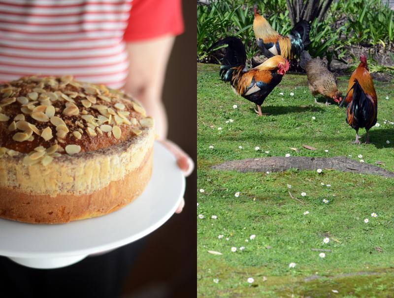 Páscoa, um bolo e uma caça aos ovos