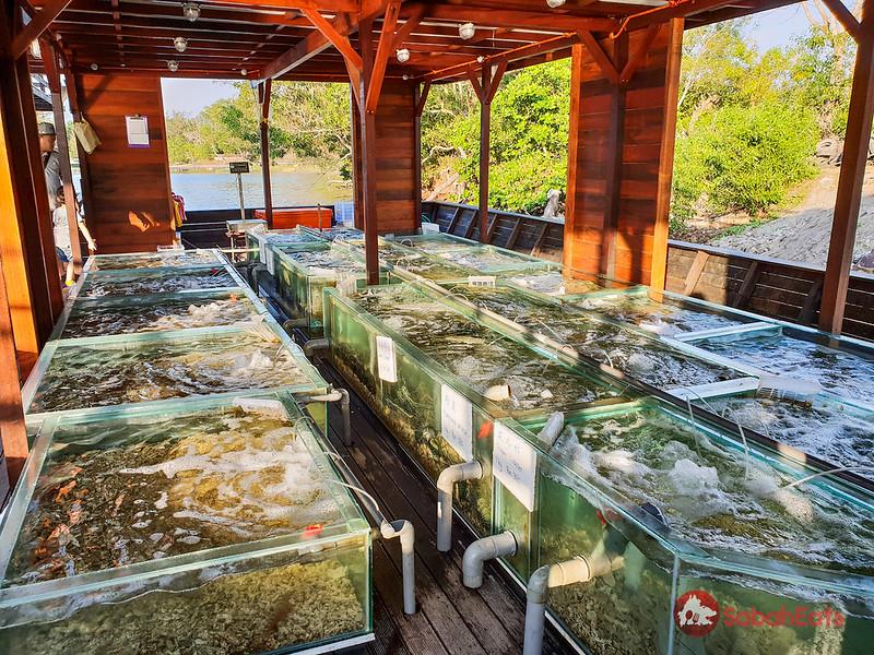 Our Land Eco Farm