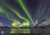 Aurora alle Lofoten